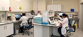 NPİSTANBUL Brain Hospital 09.jpg