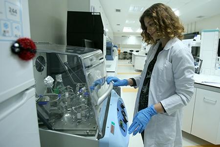 Moleküler Biyoloji ve Genetik Laboratuvarı