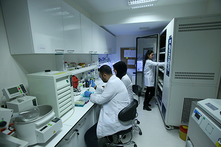 Microbial Biotechnology Research Laboratory