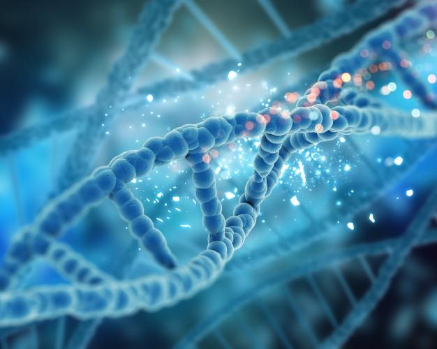 CRISPR-CAS9 Nedir Resim 3