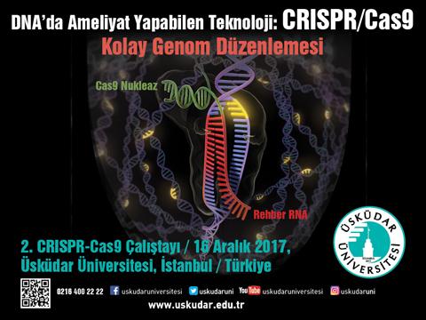 CRISPR_480x360px.jpg