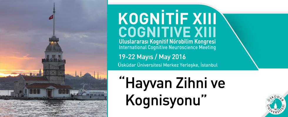 Kognitif